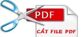 cat-file-pdf-7