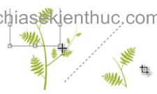 chuc-nang-cua-cac-cong-cu-trong-hop-toolbox (9)