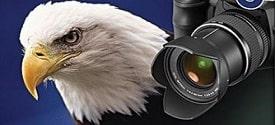 Cách tăng độ phân giải cho hình ảnh bằng PhotoZoom Pro