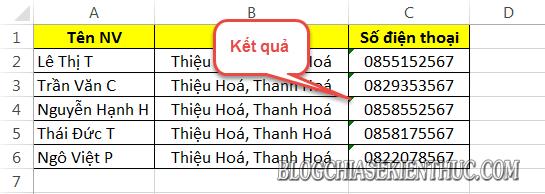 bo-dau-cham-trong-day-so-dien-thoai-tren-excel (5)