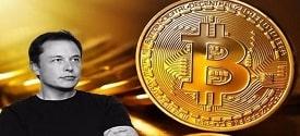 elon-musk-mua-bitcoin-1