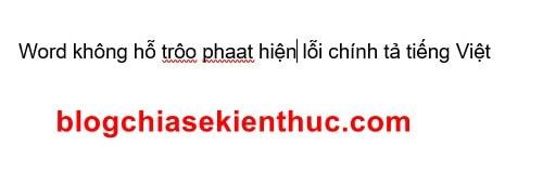 soat-loi-chinh-ta-tieng-viet-trong-word (8)