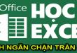 ngan-chan-tran-chu-trong-o-tren-excel