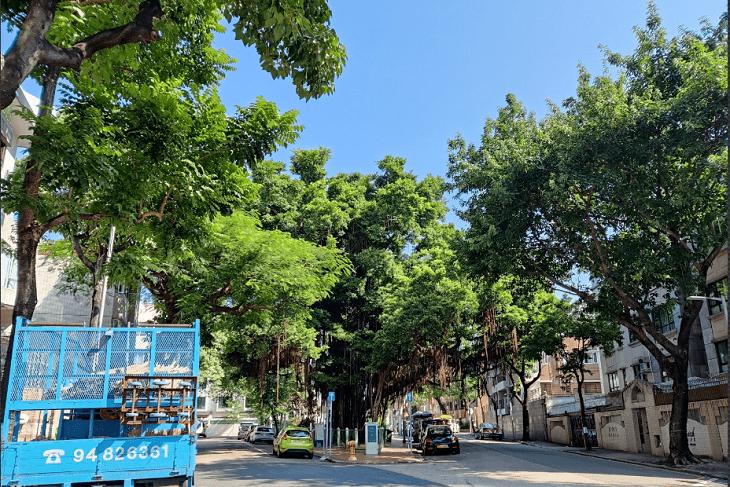 oneplus-8t-5g-co-dang-mua-khong (4)