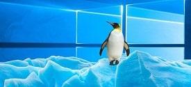 su-khac-biet-giua-linux-va-windows