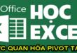 hien-thi-ket-qua-cua-pivottable-duoi-dang-bieu-do-trong-excel
