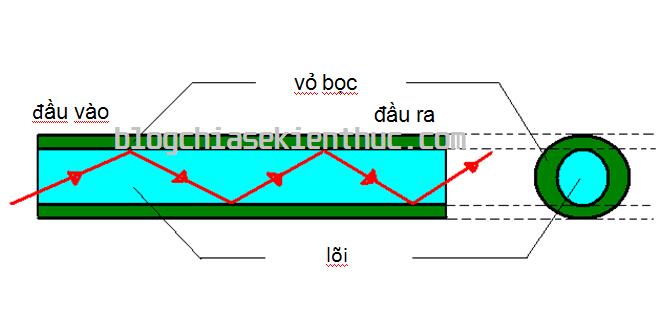 cap-quang-hoat-dong-nhu-the-nao (4)